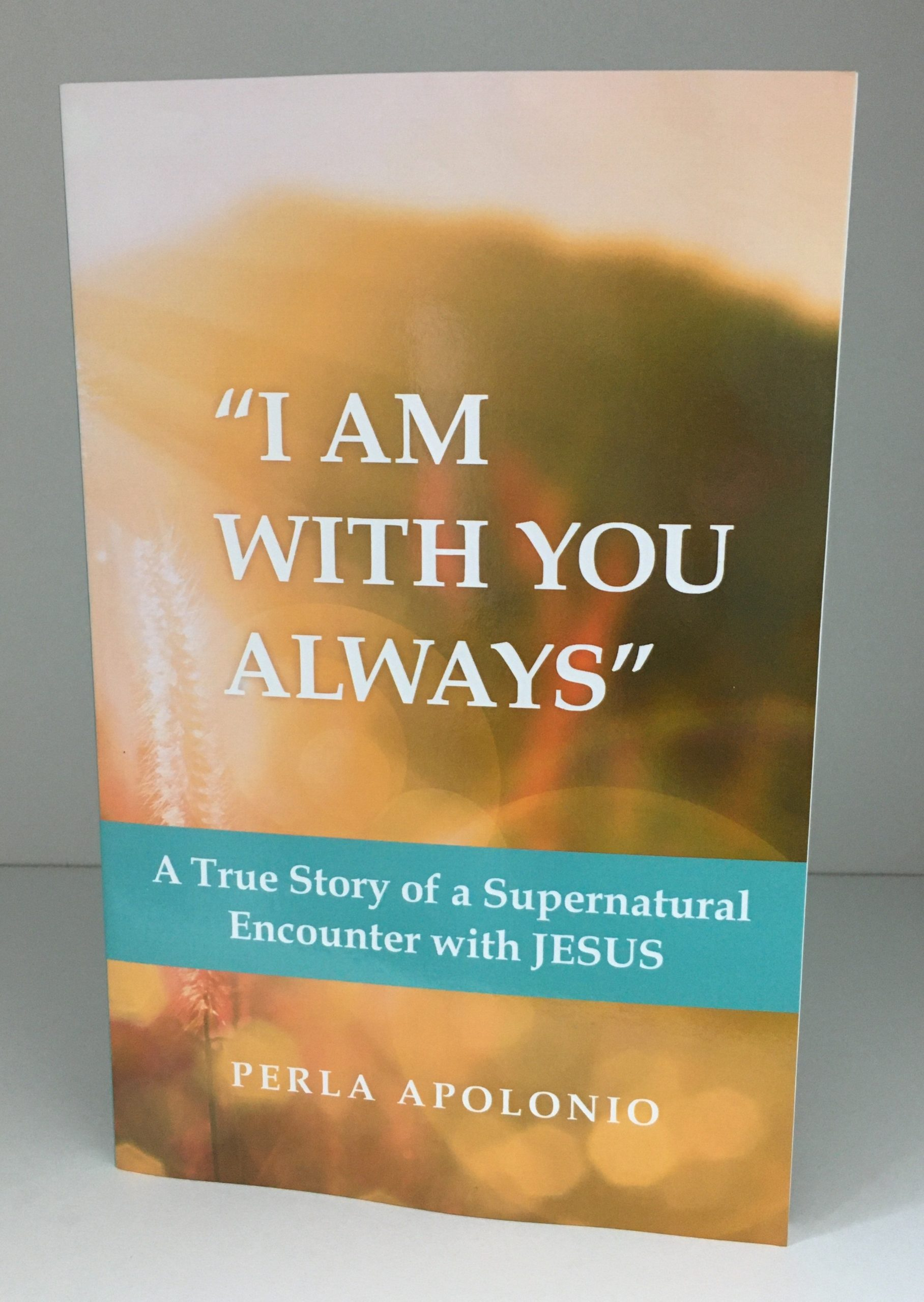 """I am with You Always"": A True Story of a Supernatural Encounter with Jesus - book"
